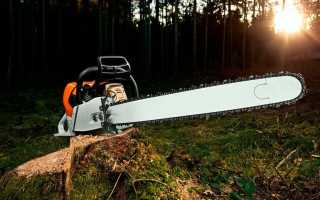 5 Best Chainsaws 2020